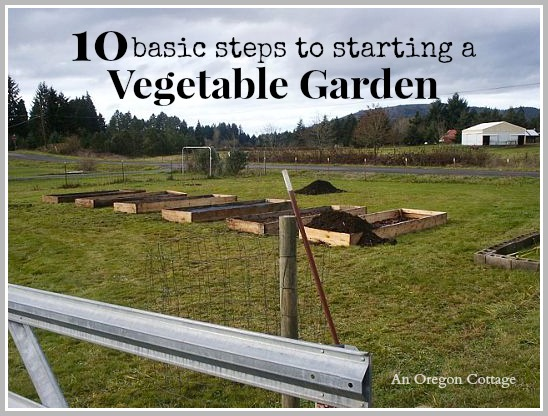 10 Basic Steps to Starting a Vegetable Garden - An Oregon Cottage