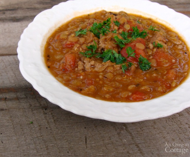Healthy and satisfying sausage and lentil stew