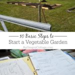 Get Started Gardening: 10 Steps to Start a Vegetable Garden