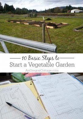 Get Started Gardening: 10 Steps to Start a Vegetable Garden
