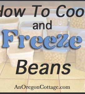 How To Cook and Freeze Dry Beans {aka Cheap Beans}