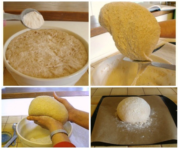 Shaping the artisan bread