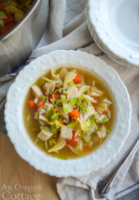 homemade chicken noodle soup above