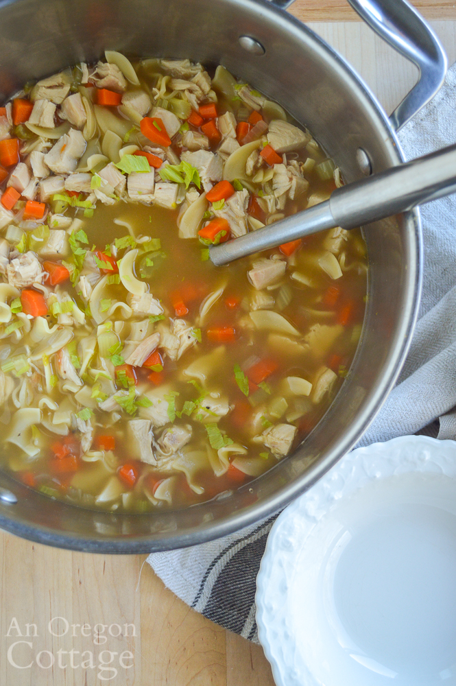 chicken noodle soup in pot