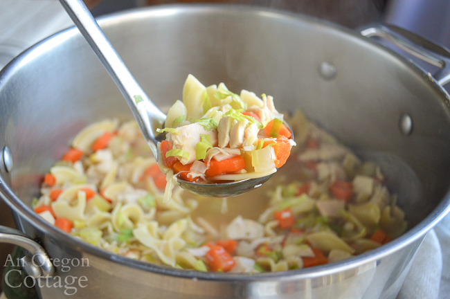 homemade chicken noodle soup on ladle