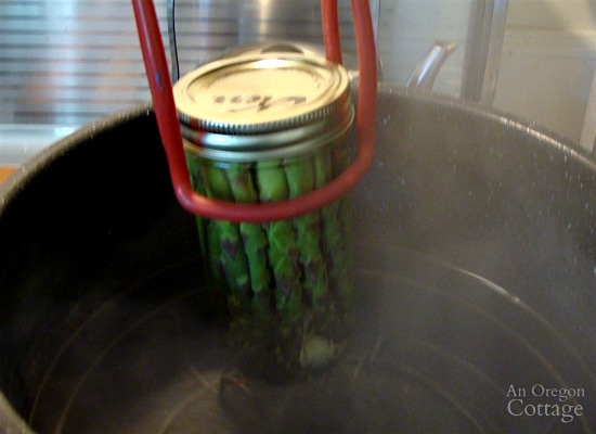 Pickling and Canning Asparagus_12-adding jar to canner