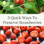 3 quick ways to preserve strawberries