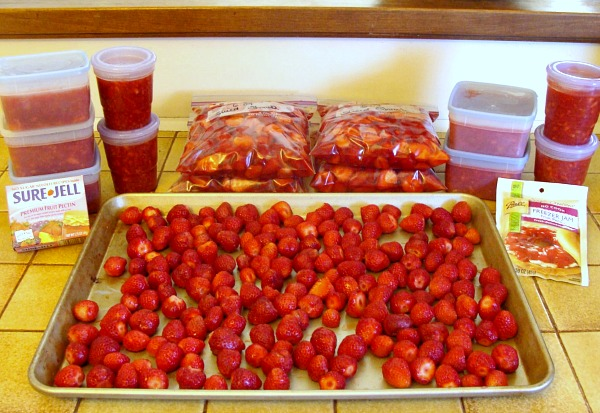 Freezing and preserving strawberries