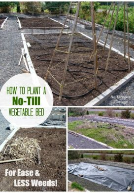Planting A Garden Bed The No-Till Way = Fewer Weeds