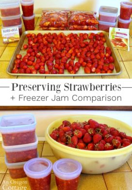 Preserving strawberries-freezer jam comparison