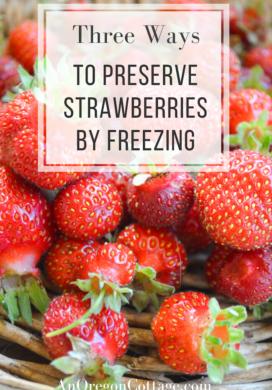 three ways to preserve strawberries by freezing