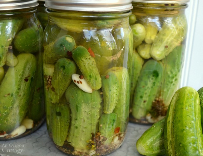 Refrigerator Garlic Dill Pickles in jars