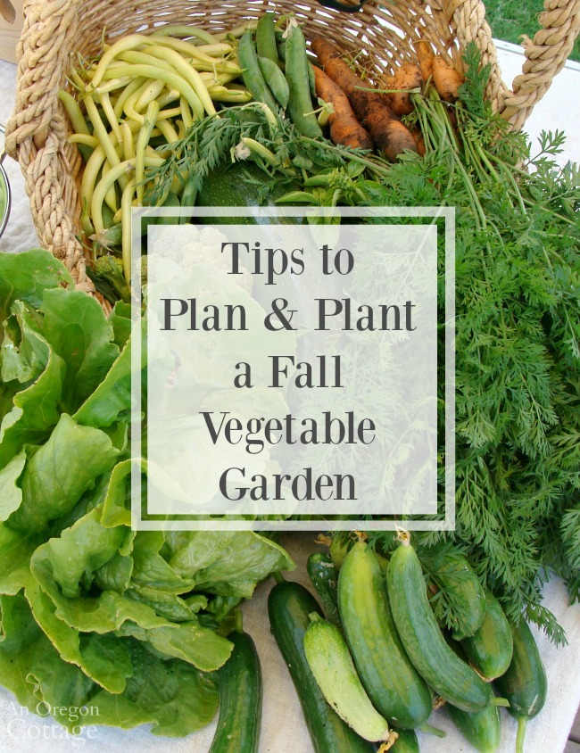 Tips To Plan And Plant A Fall Vegetable Garden  An Oregon -2129