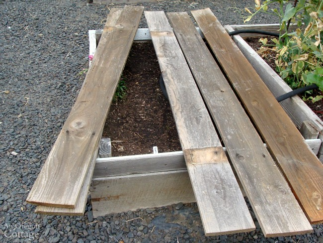 Using fence boards to shade seed rows