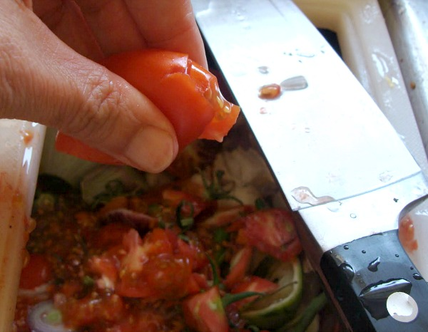 Freezer roasted tomato sauce-step2