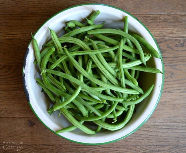 Green beans in enamel bowl
