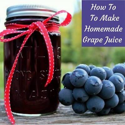 How to Make Homemade Grapejuice via Homemade Food Junkie