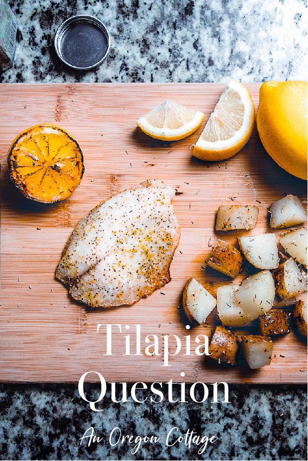 Tilapia Question