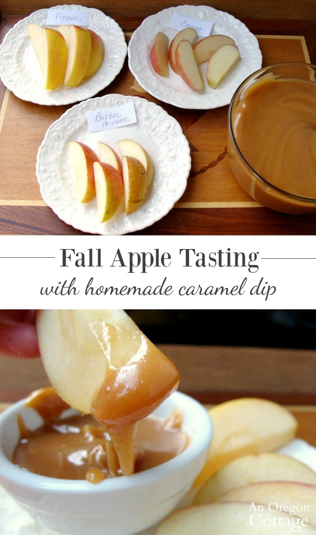 Fall apple tasting-apples on plates and caramel apple dip in bowl