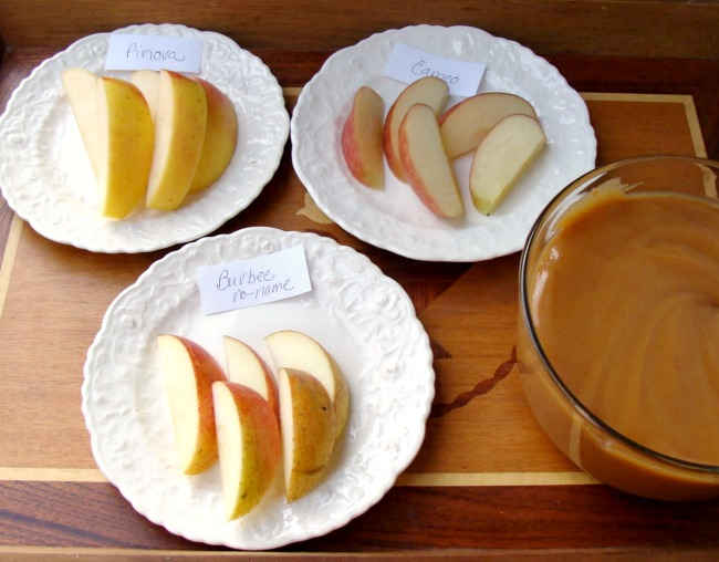 Family Traditions-Fall Apple Tasting Traditon