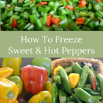 how to freeze sweet-hot peppers