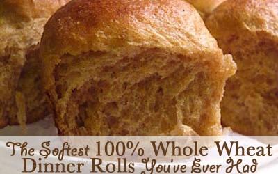 soft-whole-wheat-rolls