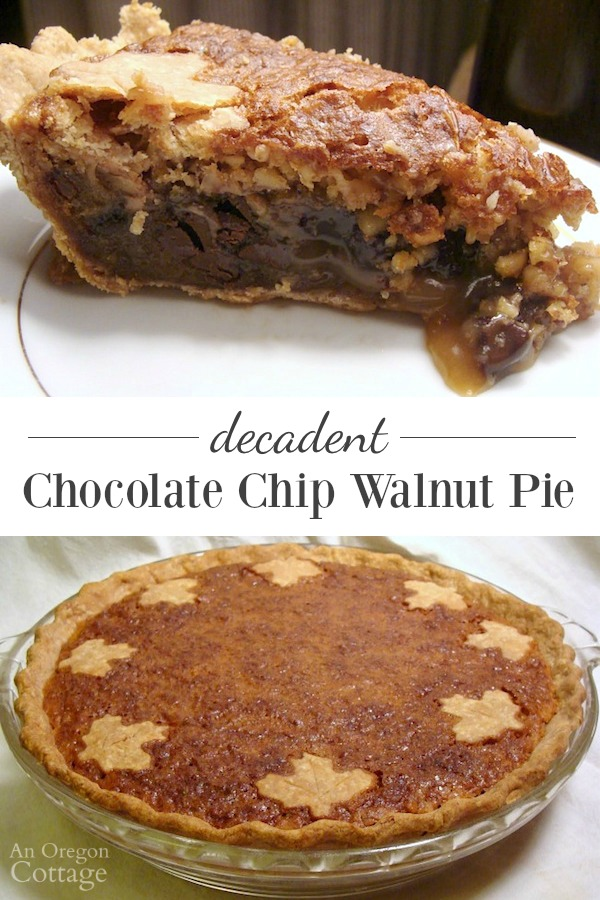 This decadent chocolate chip walnut pie is our family's candy-bar like holiday tradition.