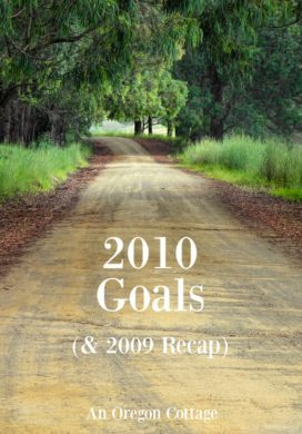 Goals for 2010 and 2009 recap