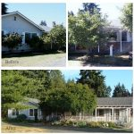 An Oregon Cottage Before and After - 2004-09