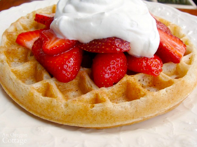 Sourdough Waffles with strawberries and cream