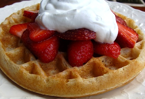 Perfect, fluffy sourdough waffles - delicious with strawberries and whipped cream.