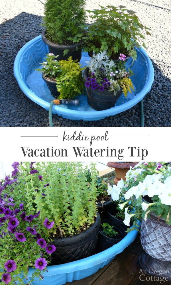 Save your planted pots - and your sanity - with this easy vacation watering tip.