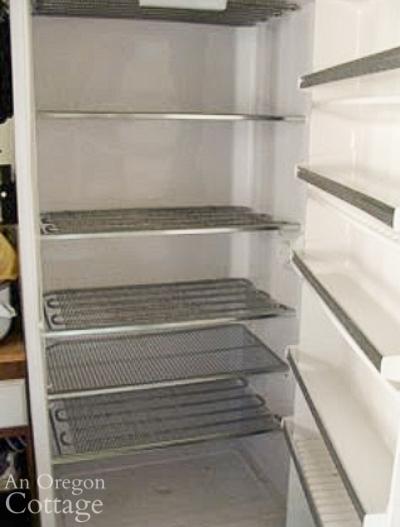 freezer after defrosting