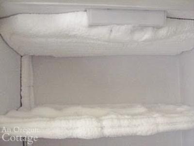 heavily frosted freezer shelves