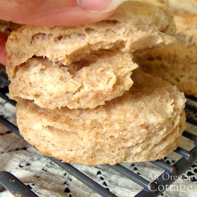 whole wheat flaky biscuit layers
