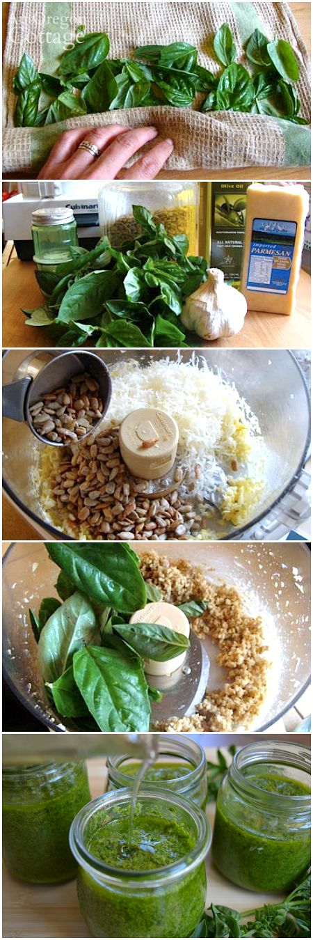 How to Make Frugal Pesto with Sunflower Seeds