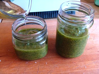 frugal pesto in jars