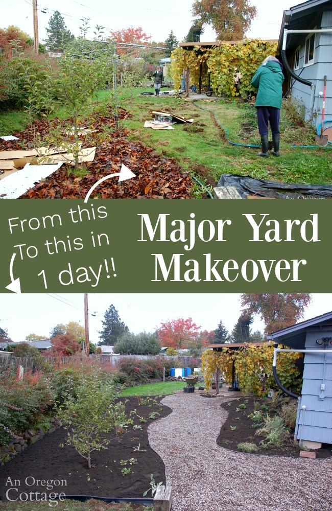 Major Yard Makeover before and after