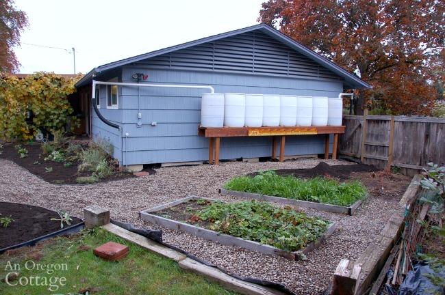 Major Yard Makeover-side yard after