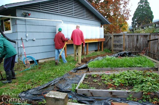 Major Yard Makeover-side yard before