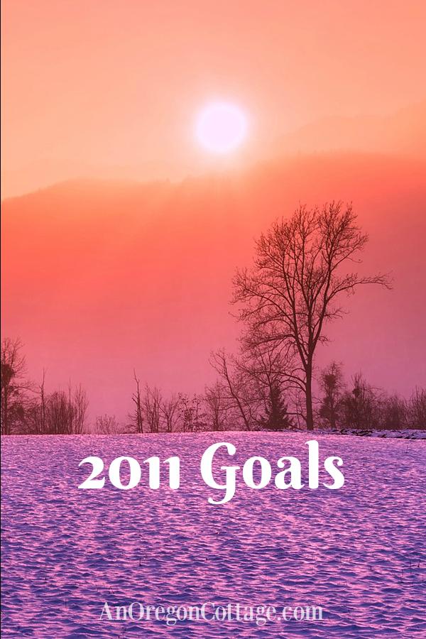 2011 Goals