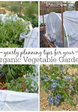 Yearly Vegetable Garden Planning- how do you plan and organize?