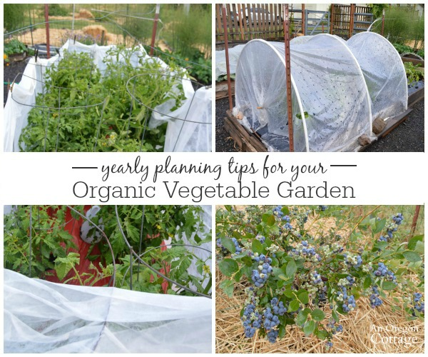 Organic Vegetable Garden Planning TIps for crop rotation and seed starting