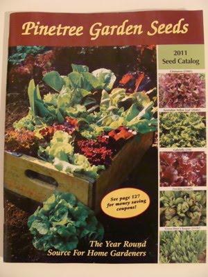 Pintetree catalog