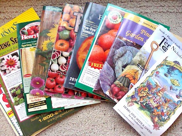 lots of garden catalogs