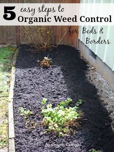 5 Easy Steps to Organic Weed Control for Bed and Borders - An Oregon Cottage