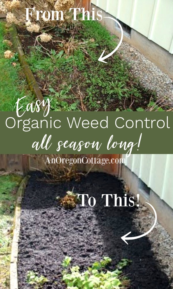 Easy organic weed control all season long