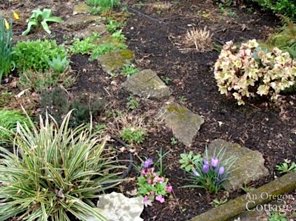 Previously mulch flower bed