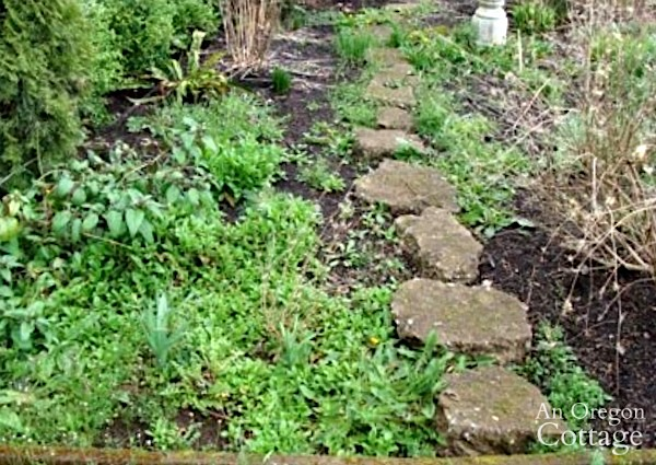 5 Easy Steps To Organic Weed Control For Beds Borders An