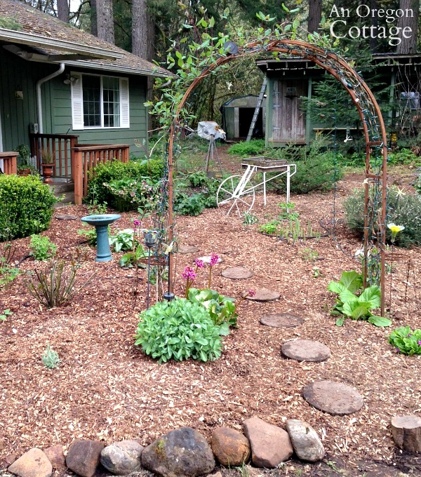 weed free garden mulched with paper and wood chips